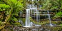 The famous Russell Falls in Mount Field National Park are easily accessible from the Visitor Centre at the entrance of the park. The walk is wheelchair accessible.