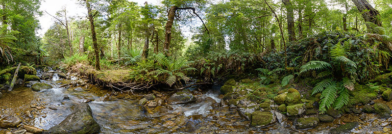 360 panorama of Upstream from the Growling Swallet, Mt Field