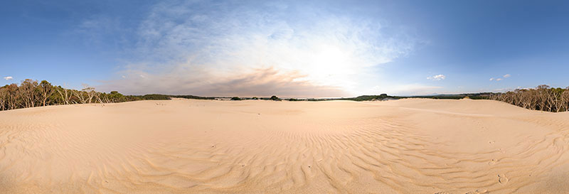 360 panorama of Henty Dunes