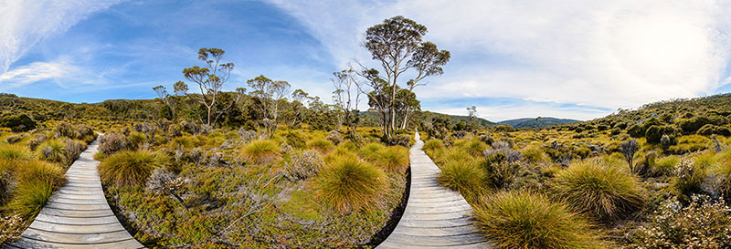 360 panorama of Track to Crater Lake, Cradle Mountain